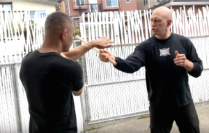 Functional Martial Arts Level 2 - Low Resistance