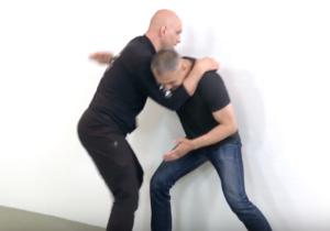 Functional Martial Arts Level 3 - partner resistance